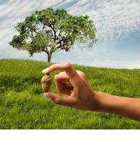 Тексты и видео уроки по Карма-йоге